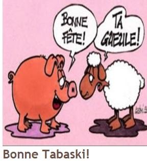 mouton pig
