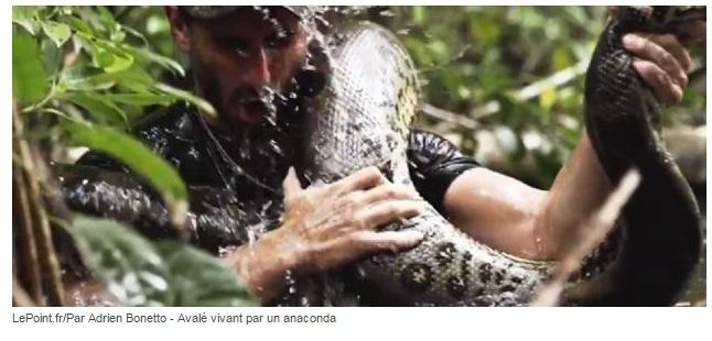 avalé par anaconda