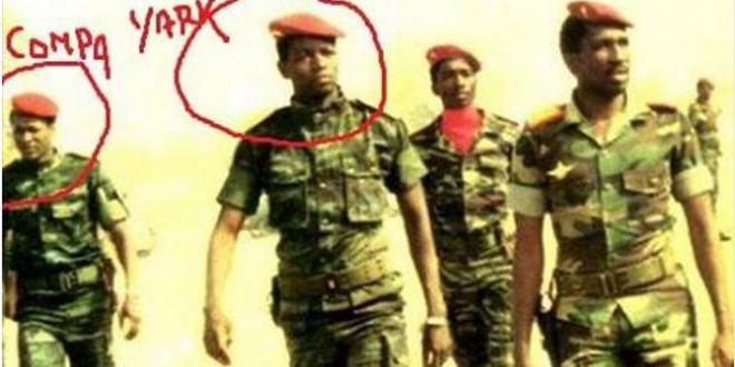 Yark Sankara
