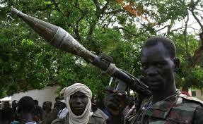 Ethiopie: l'armée neutralise plus de 250 rebelles Oromo dans l'Etat d'Oromia  - Bénin Web TV