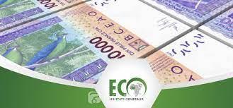 Togo : Les défis et états généraux de l'ECO se précisent sans Nathalie Yamb  - KOACI